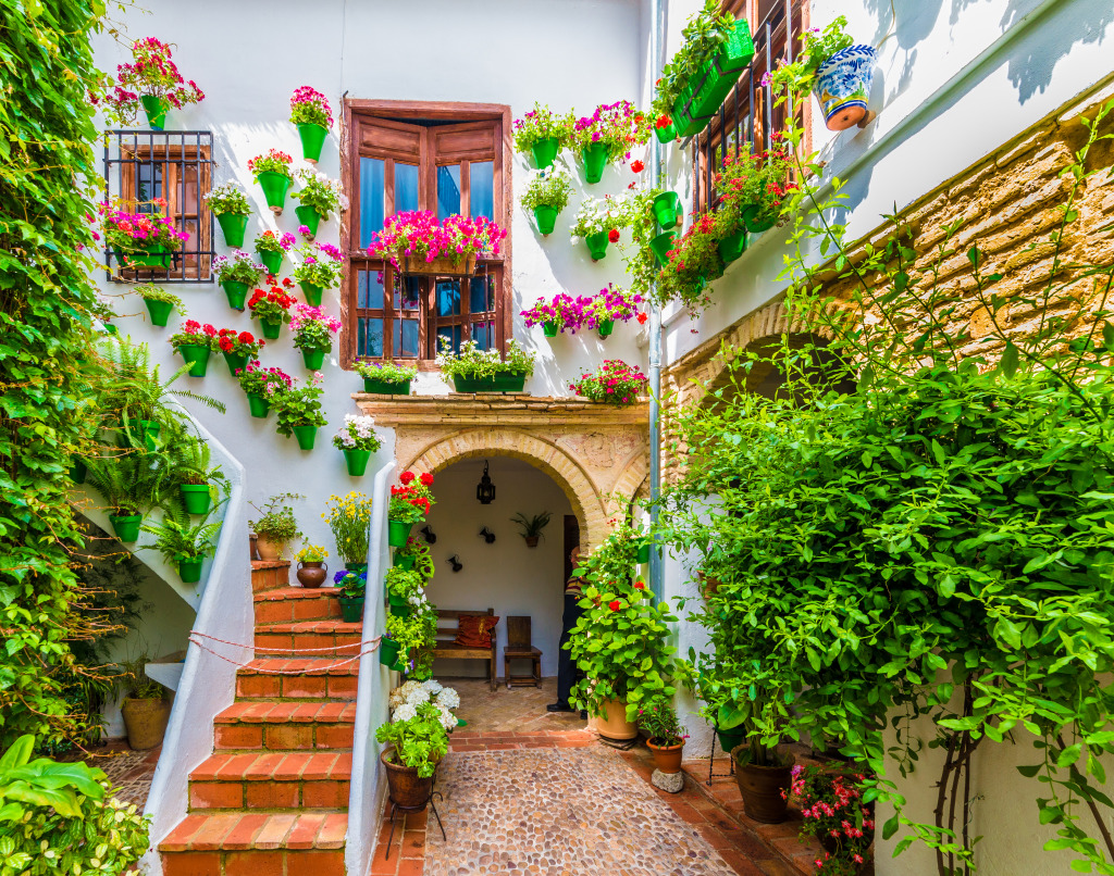 Courtyard with Flower in Cordoba, Spain