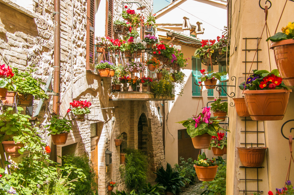 Floral Streets in Spello, Italy