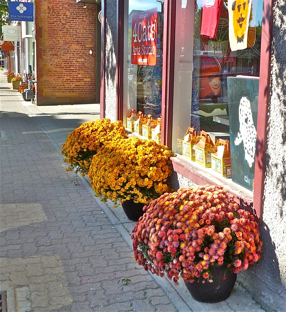 Flower Baskets along 9th Aven