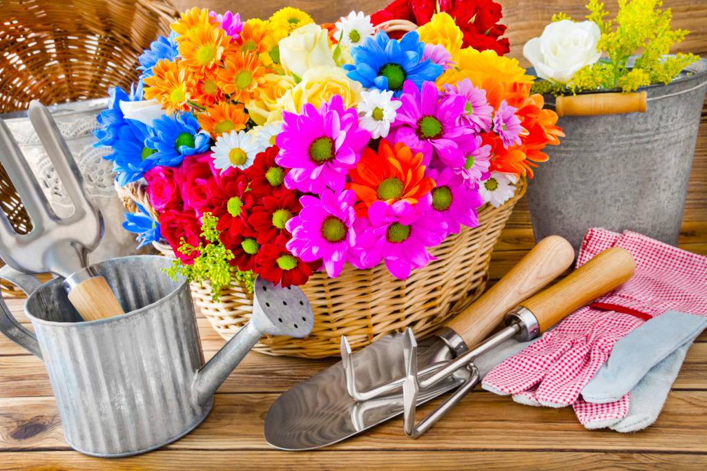 Gardening and Decorating With Flower