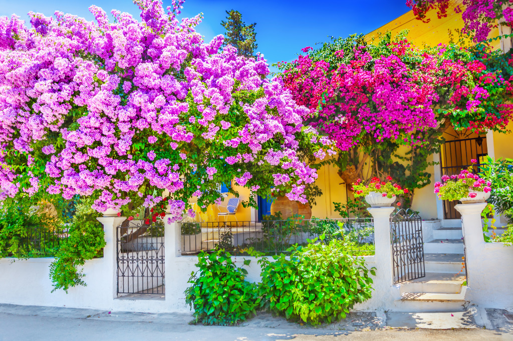 Greek House with Bougainv