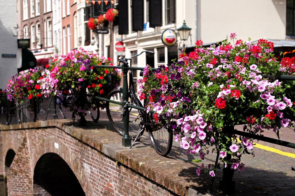 Holland: Flowers, Bikes and Brid