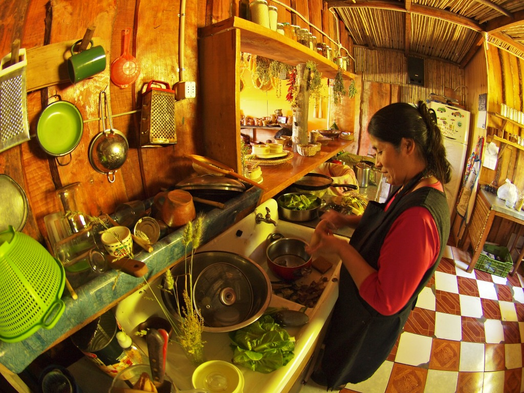 Indigenous Mapuche in Her Kitchen