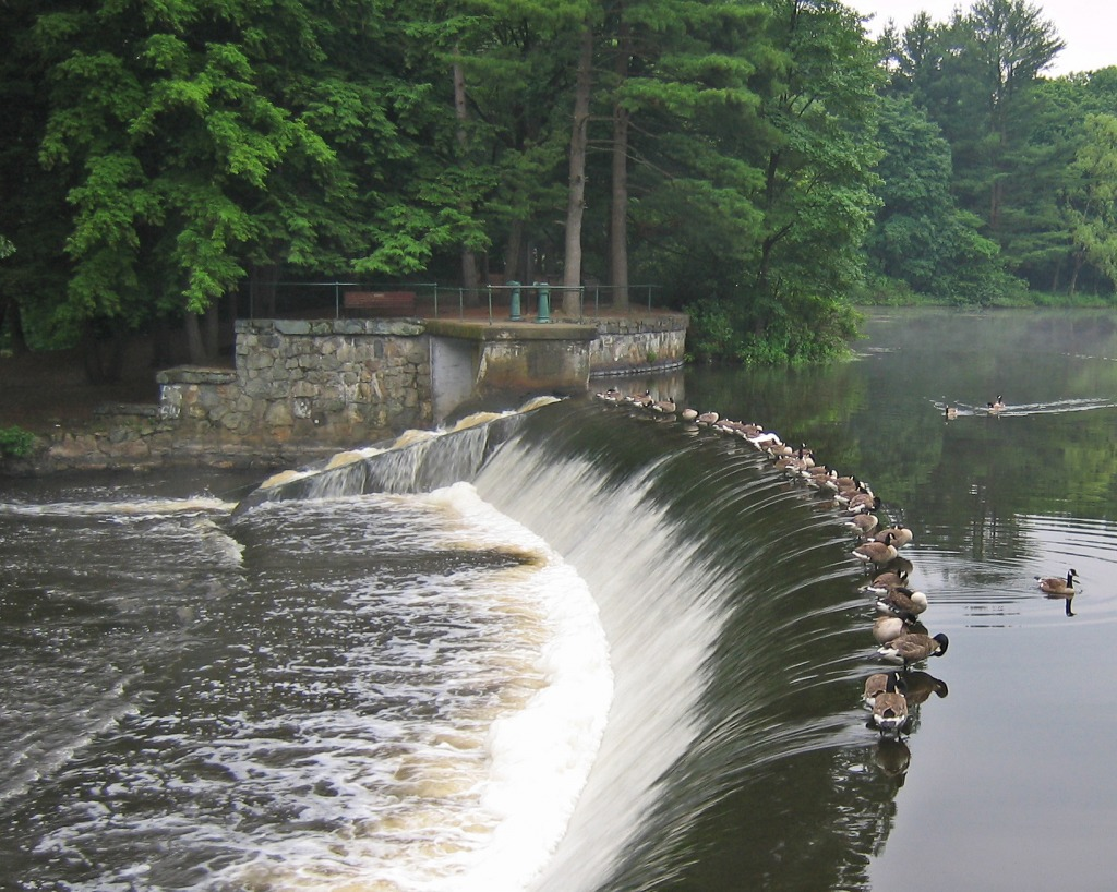 South Natick Dam, Charles River